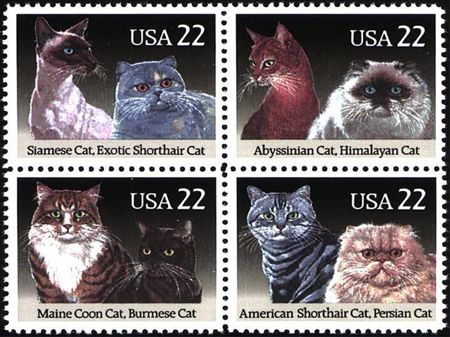 Cat Stamps wallpaper