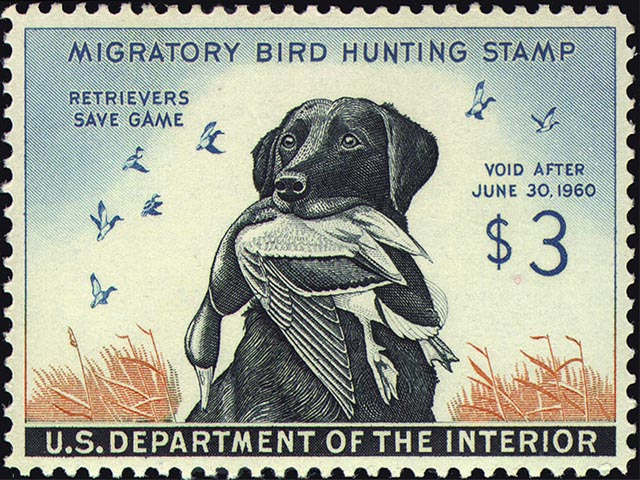 1959 Duck Stamp wallpaper