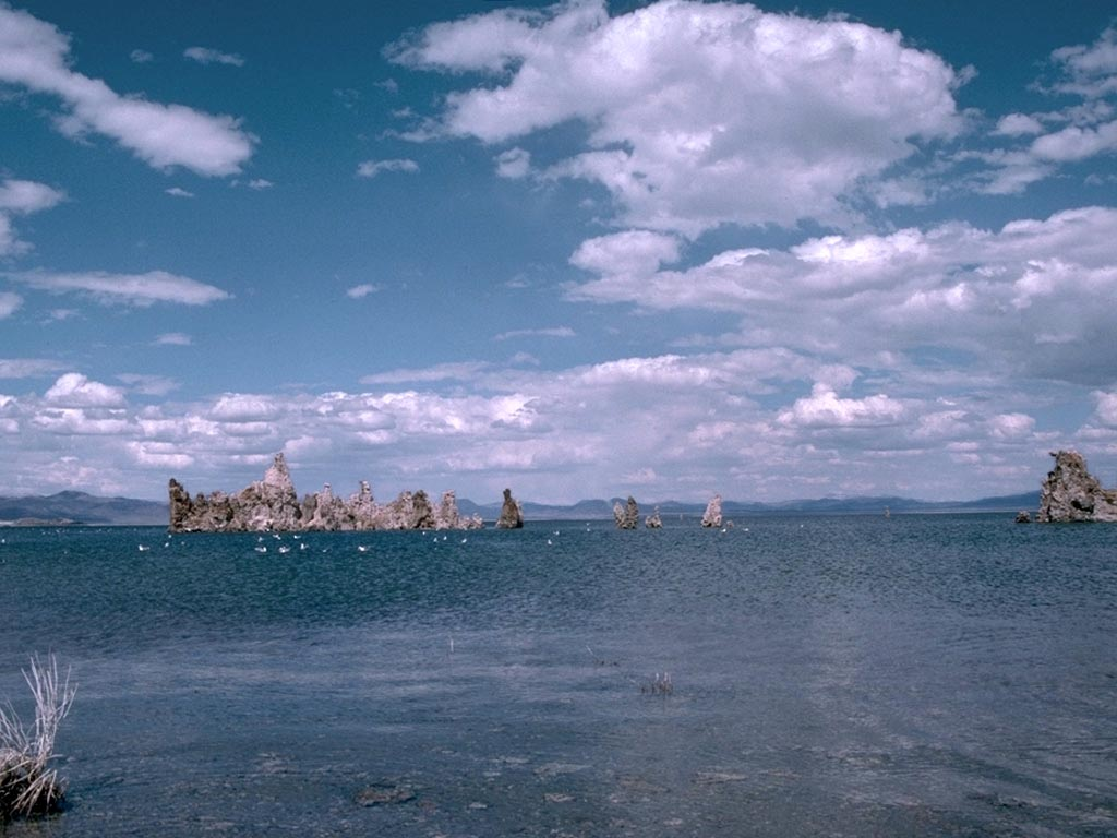 Mono Lake California wallpaper