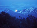 Yukon Moonrise