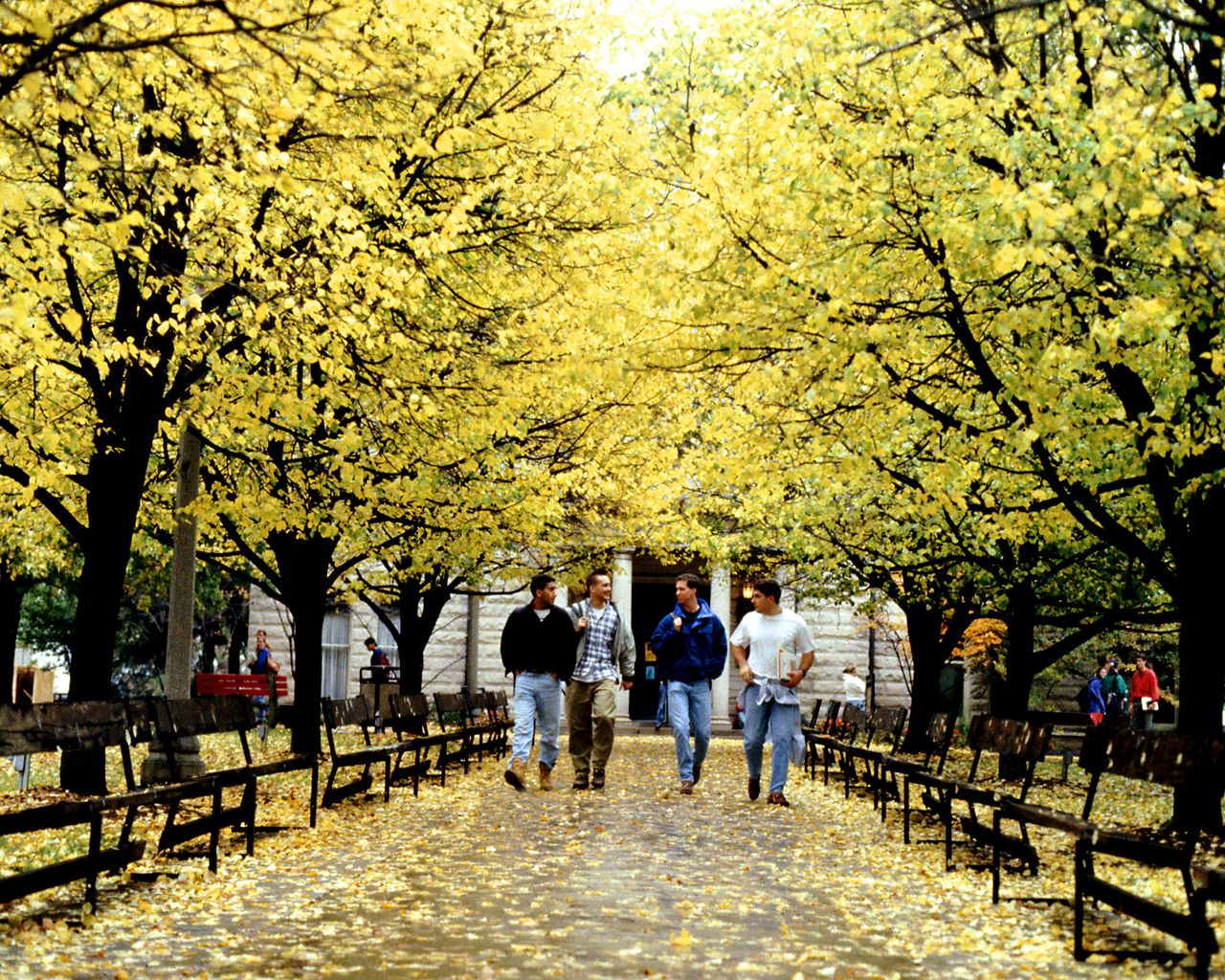 Ohio Wesleyan University<br />Fall Campus Walkway wallpaper