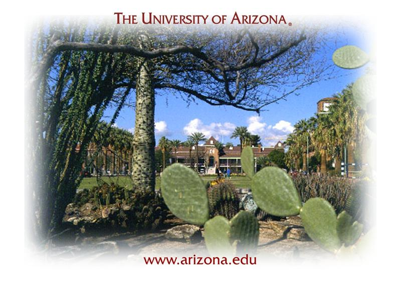 University of Arizona<br />Joseph Wood Krutch Memorial Garden wallpaper