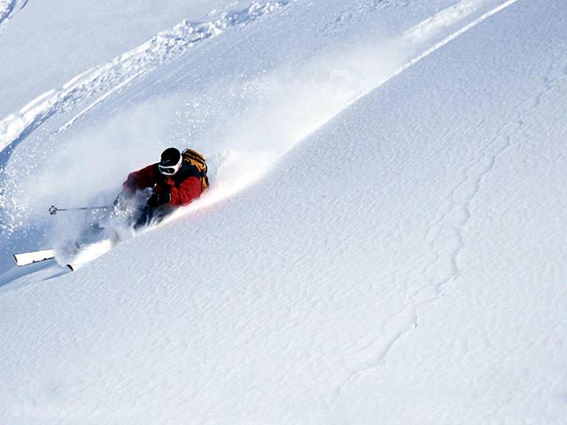 Skier in Powder wallpaper