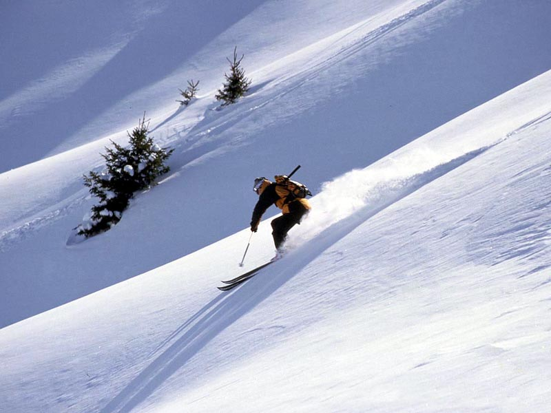 Lone Skier on Powder wallpaper
